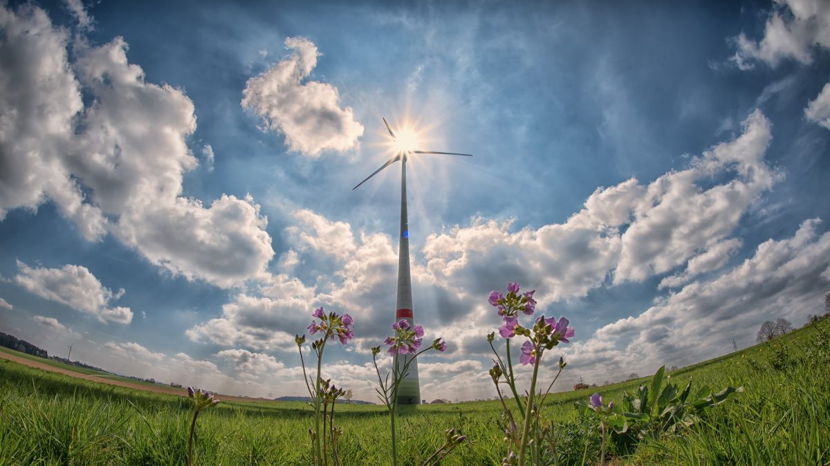 Another Record Breaker – Renewables Provide Over Half of Our Electricity