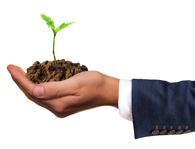 6 Tips to Make Your Business More Green